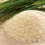 Как провести рисовое SPA?