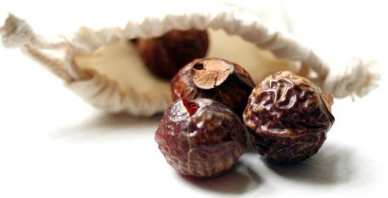 Индийские мыльные орехи